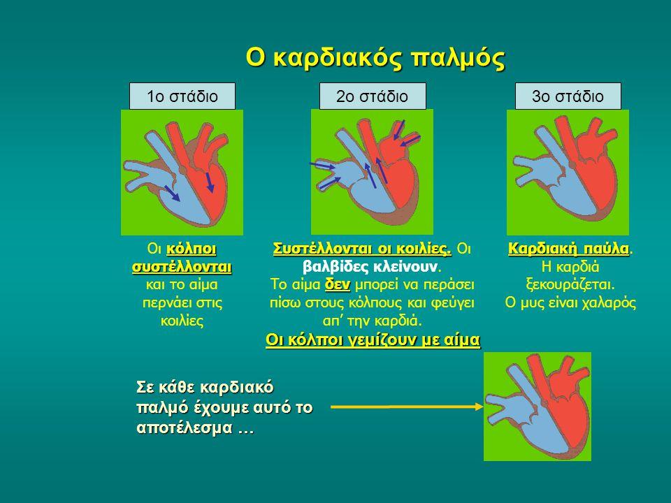 Ο καρδιακός παλμός 1ο στάδιο 2ο στάδιο 3ο στάδιο
