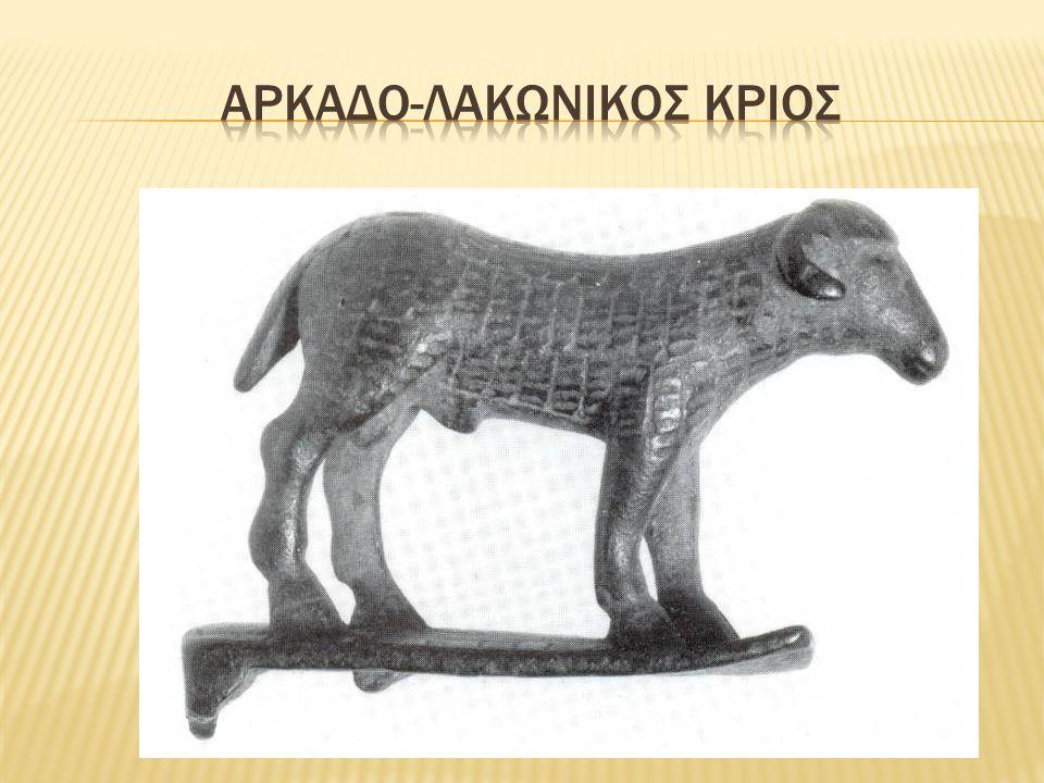 Αρκαδο-λακωνικος κριος