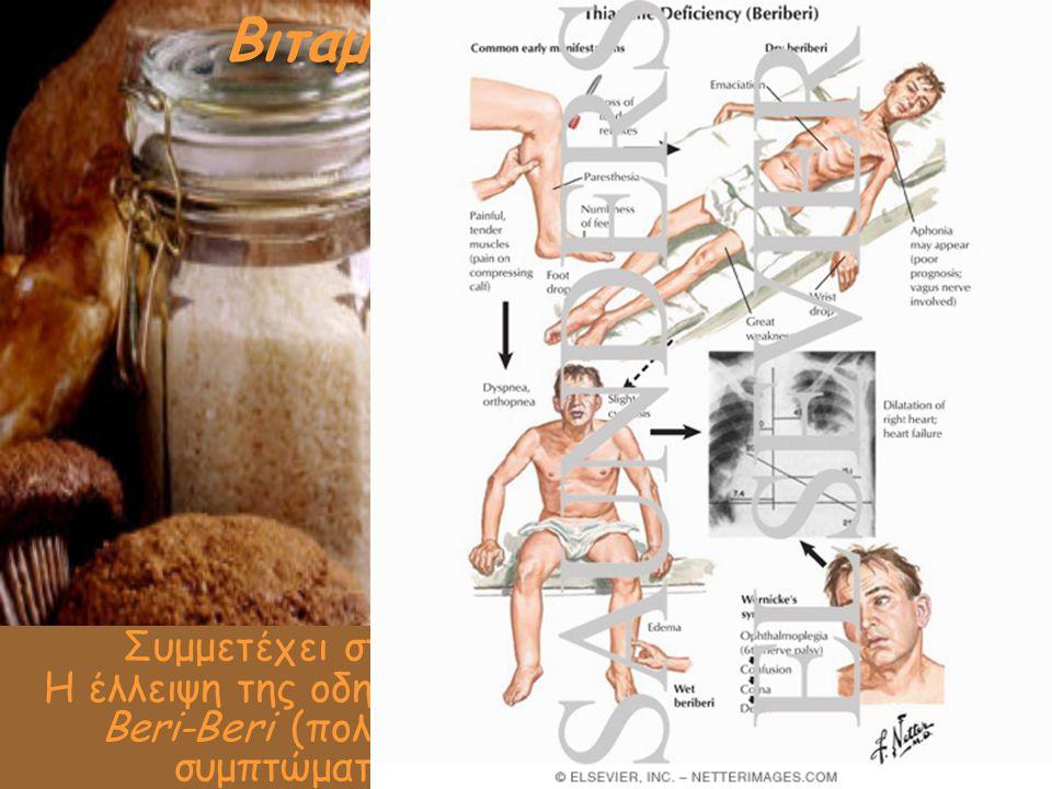Βιταμίνη Β1 (θειαμίνη)