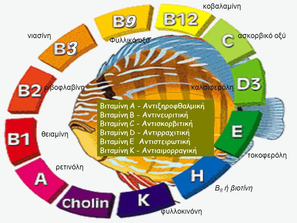 9 3 κοβαλαμίνη νιασίνη ασκορβικό οξύ Φυλλικό οξύ ριβοφλαβίνη