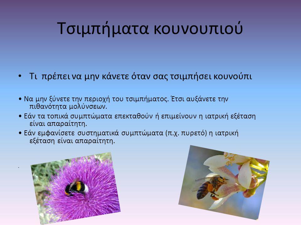 Τσιμπήματα κουνουπιού