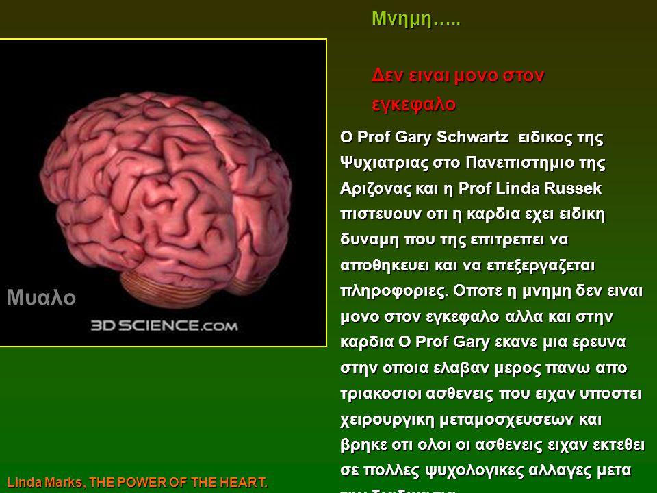 Μυαλο Mνημη….. Δεν ειναι μονο στον εγκεφαλο