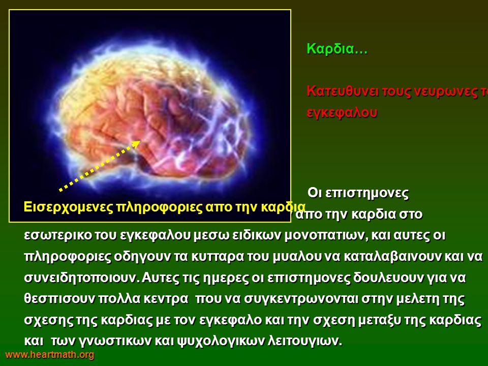 Κατευθυνει τους νευρωνες του εγκεφαλου