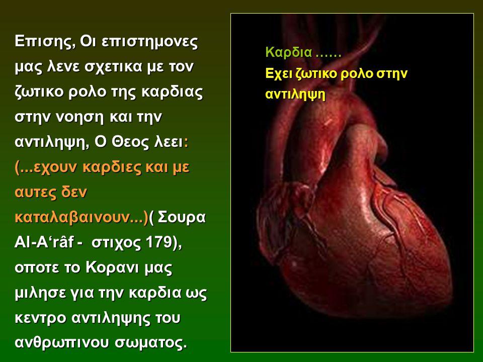 Επισης, Οι επιστημονες μας λενε σχετικα με τον ζωτικο ρολο της καρδιας στην νοηση και την αντιληψη, Ο Θεος λεει: (...εχουν καρδιες και με αυτες δεν καταλαβαινουν...)( Σουρα Al-A'râf - στιχος 179), οποτε το Κορανι μας μιλησε για την καρδια ως κεντρο αντιληψης του ανθρωπινου σωματος.