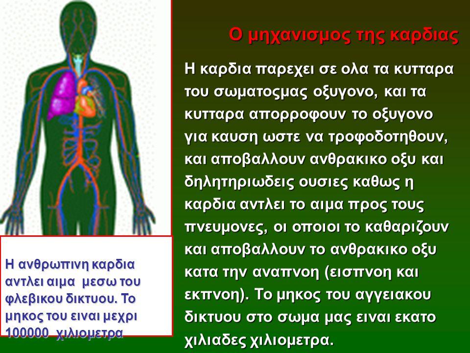 Ο μηχανισμος της καρδιας