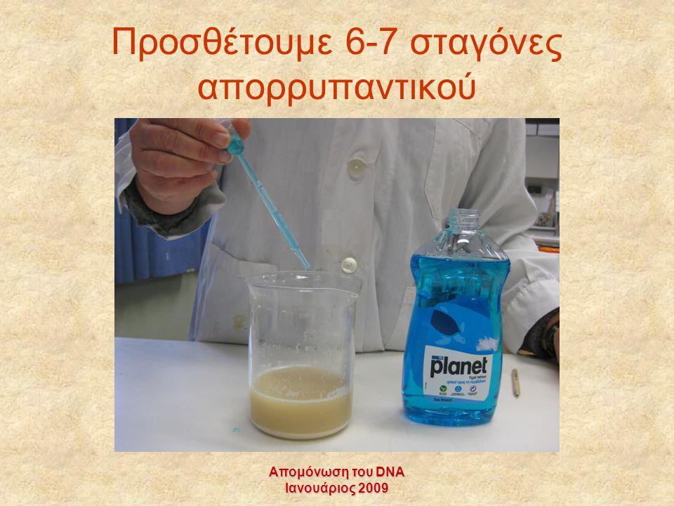 Προσθέτουμε 6-7 σταγόνες απορρυπαντικού