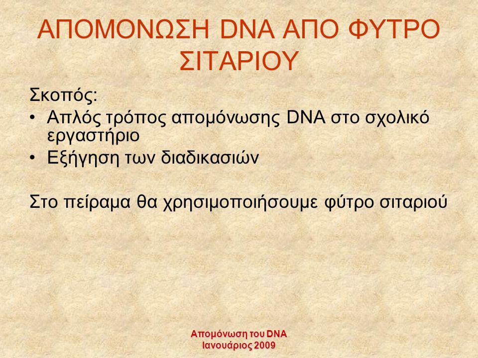 ΑΠΟΜΟΝΩΣΗ DNA AΠΟ ΦΥΤΡΟ ΣΙΤΑΡΙΟΥ
