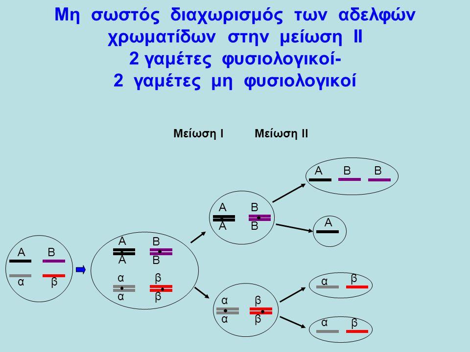 Μη σωστός διαχωρισμός των αδελφών χρωματίδων στην μείωση ΙΙ 2 γαμέτες φυσιολογικοί- 2 γαμέτες μη φυσιολογικοί