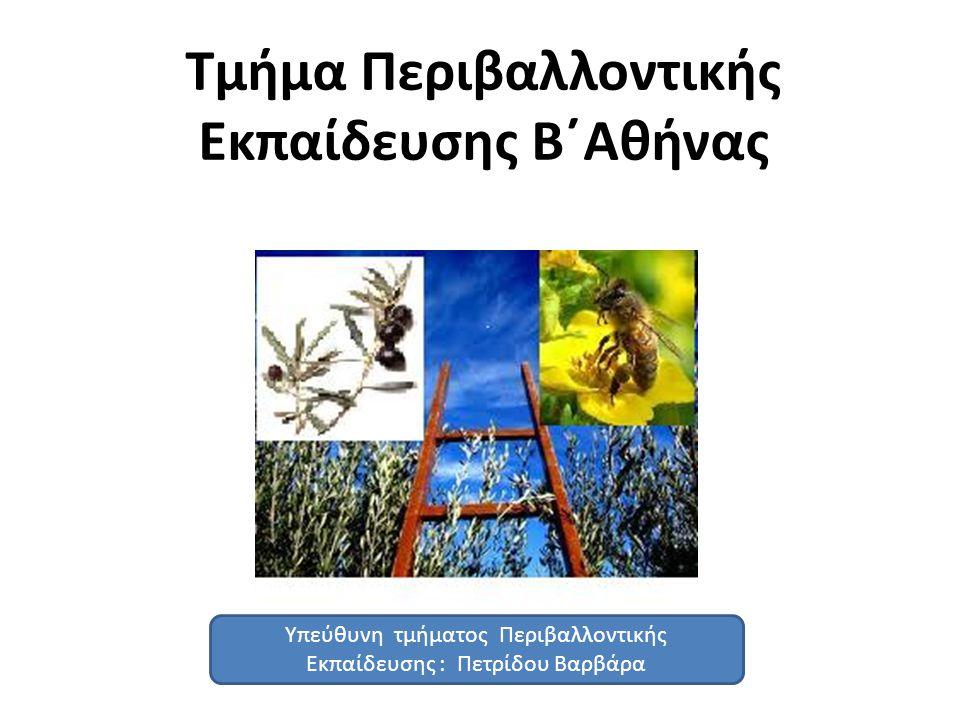 Τμήμα Περιβαλλοντικής Εκπαίδευσης Β΄Αθήνας