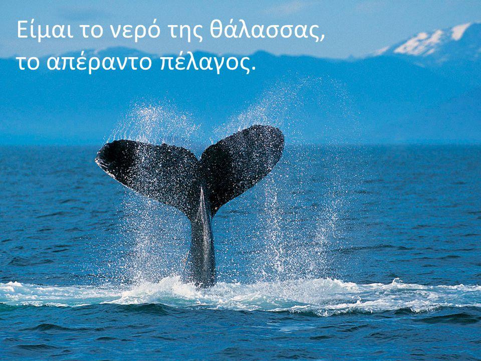 Είμαι το νερό της θάλασσας, το απέραντο πέλαγος.