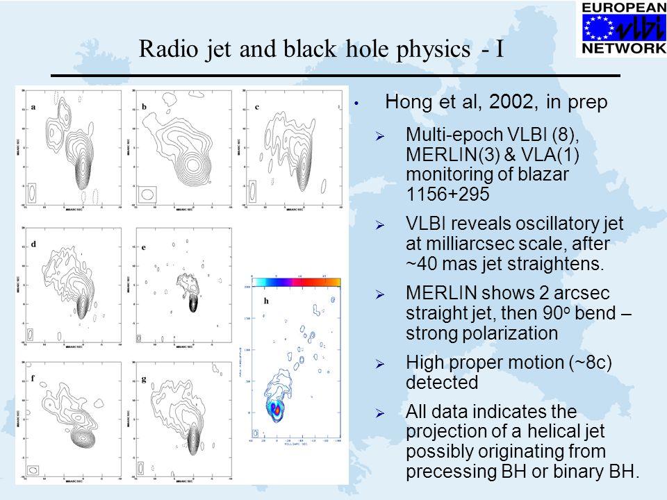 Radio jet and black hole physics - I