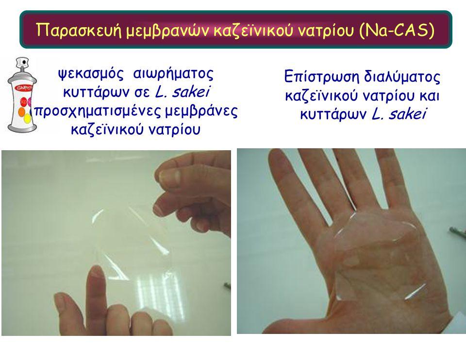 Επίστρωση διαλύματος καζεϊνικού νατρίου και κυττάρων L. sakei