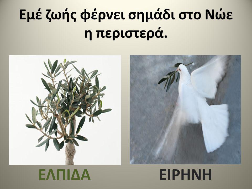 Εμέ ζωής φέρνει σημάδι στο Νώε η περιστερά.