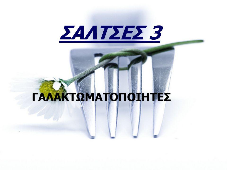 2010 ΣΑΛΤΣΕΣ 3 ΓΑΛΑΚΤΩΜΑΤΟΠΟΙΗΤΕΣ