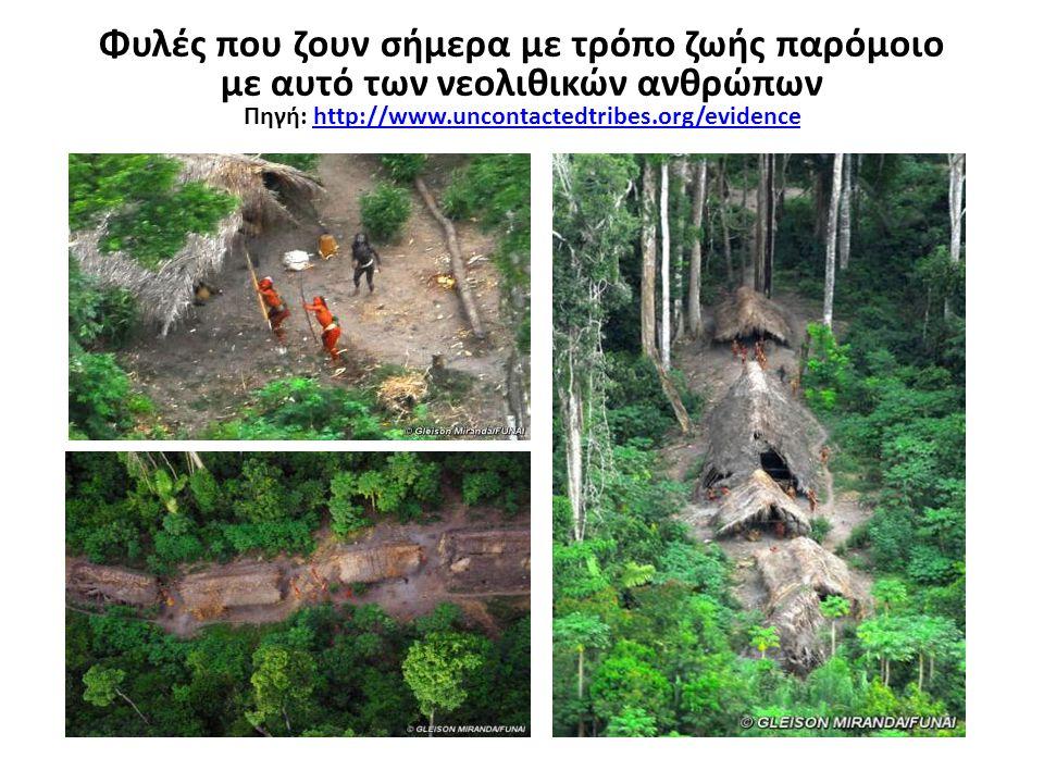 Πηγή: http://www.uncontactedtribes.org/evidence