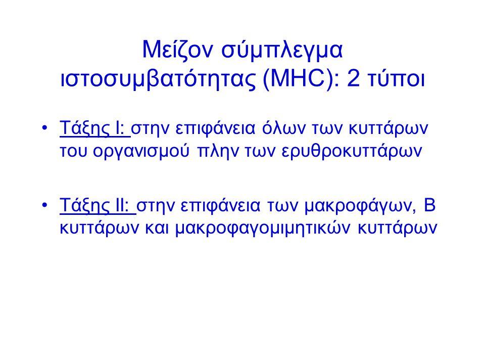 Μείζον σύμπλεγμα ιστοσυμβατότητας (ΜΗC): 2 τύποι