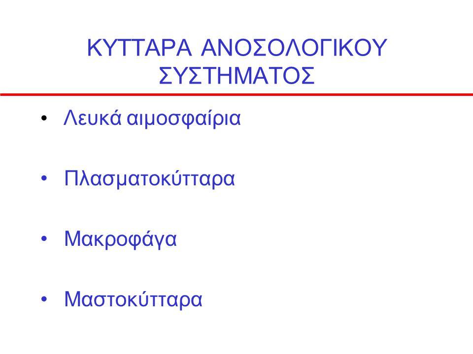 ΚΥΤΤΑΡΑ ΑΝΟΣΟΛΟΓΙΚΟΥ ΣΥΣΤΗΜΑΤΟΣ