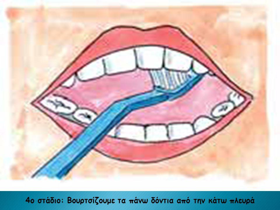 4ο στάδιο: Βουρτσίζουμε τα πάνω δόντια από την κάτω πλευρά