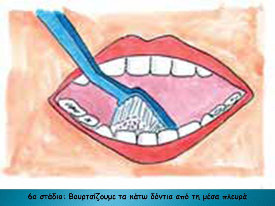 6ο στάδιο: Βουρτσίζουμε τα κάτω δόντια από τη μέσα πλευρά
