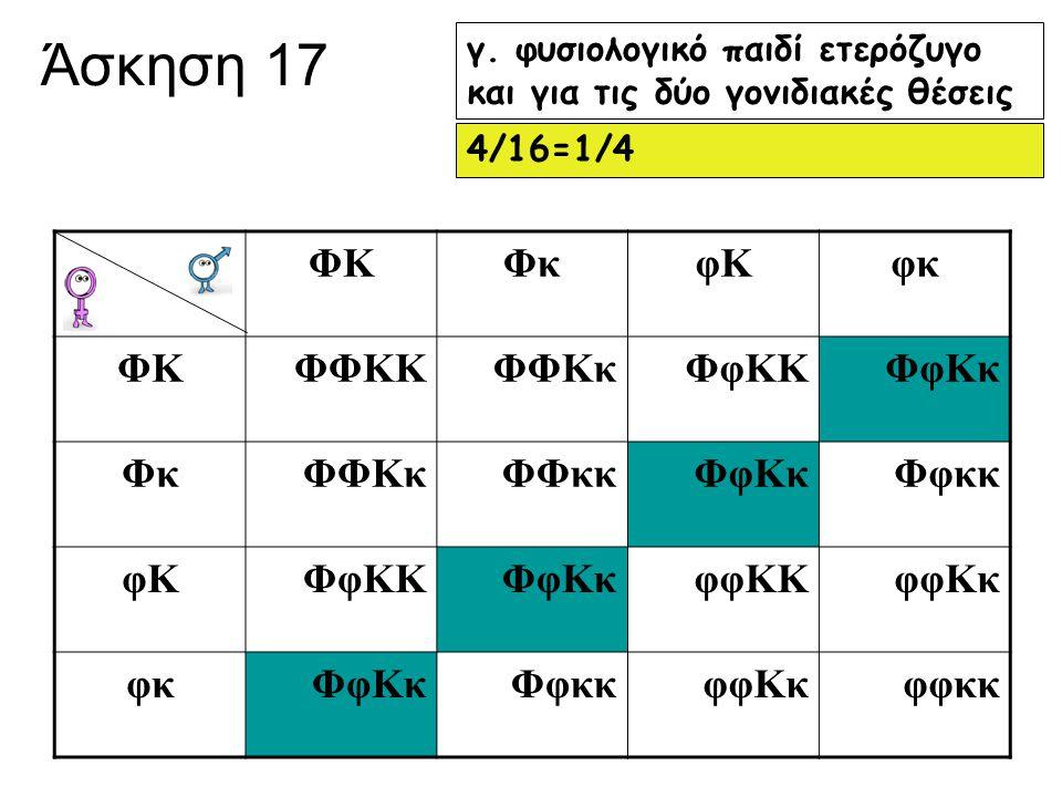 Άσκηση 17 ΦΚ Φκ φΚ φκ ΦΦΚΚ ΦΦΚκ ΦφΚΚ ΦφΚκ ΦΦκκ Φφκκ φφΚΚ φφΚκ φφκκ