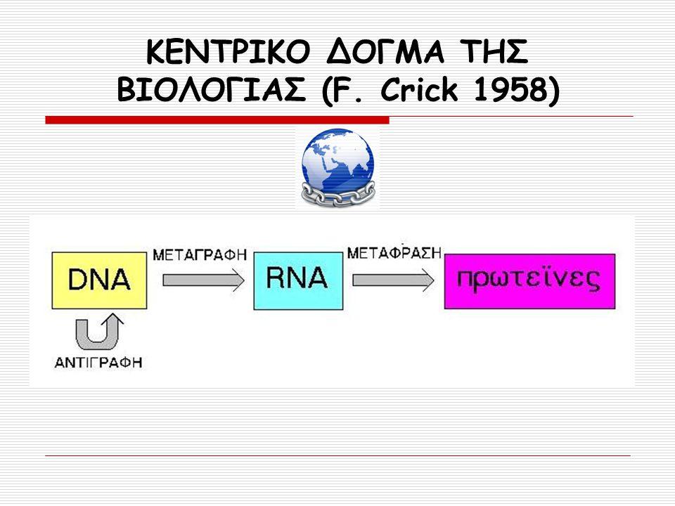 ΚΕΝΤΡΙΚΟ ΔΟΓΜΑ ΤΗΣ ΒΙΟΛΟΓΙΑΣ (F. Crick 1958)