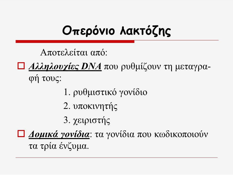 Οπερόνιο λακτόζης Αποτελείται από: