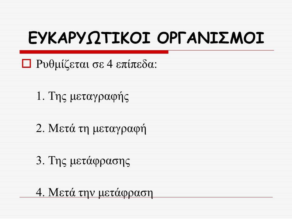 ΕΥΚΑΡΥΩΤΙΚΟΙ ΟΡΓΑΝΙΣΜΟΙ