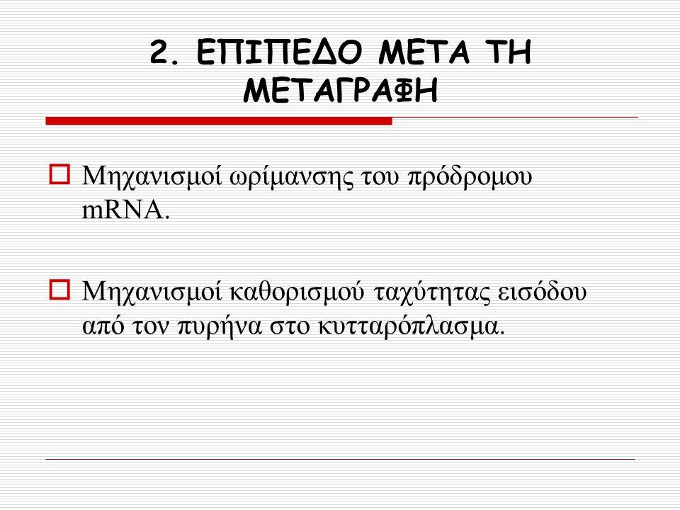 2. ΕΠΙΠΕΔΟ ΜΕΤΑ ΤΗ ΜΕΤΑΓΡΑΦΗ