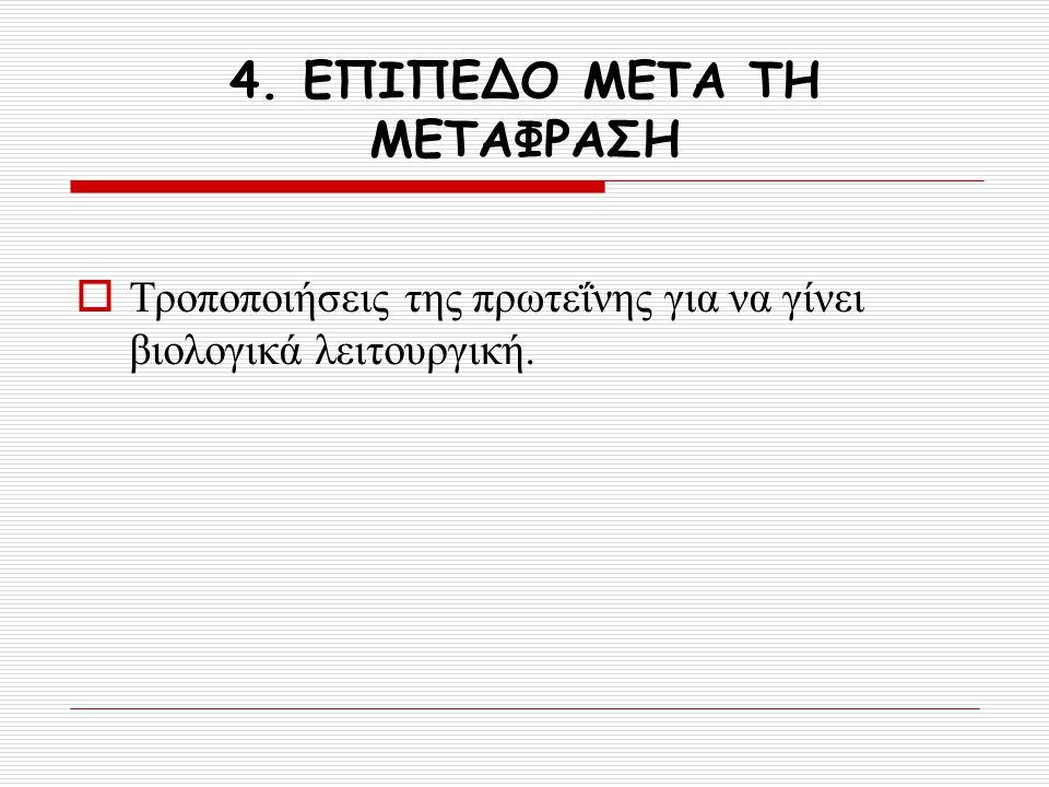 4. ΕΠΙΠΕΔΟ ΜΕΤΑ ΤΗ ΜΕΤΑΦΡΑΣΗ