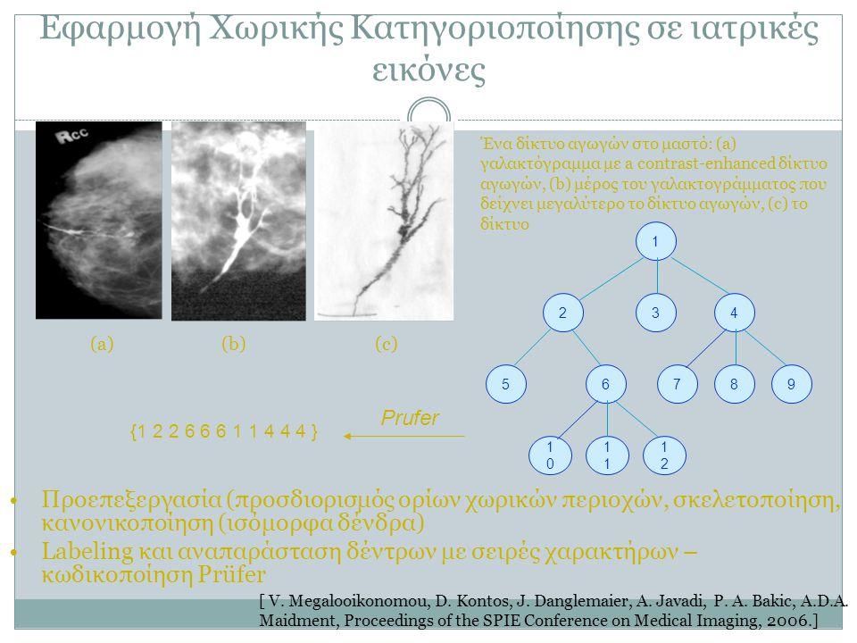 Εφαρμογή Χωρικής Κατηγοριοποίησης σε ιατρικές εικόνες