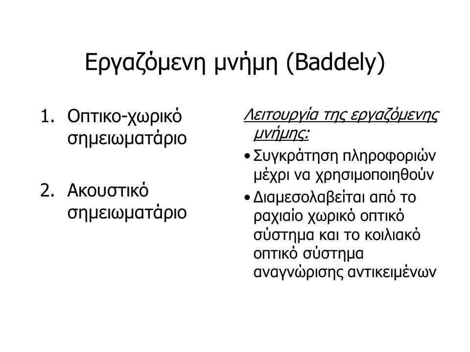 Εργαζόμενη μνήμη (Baddely)