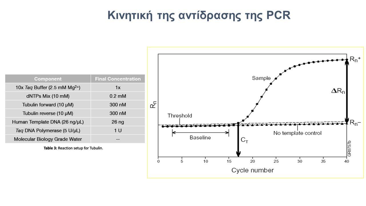 Κινητική της αντίδρασης της PCR