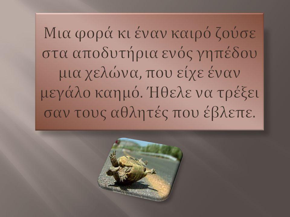 Μια φορά κι έναν καιρό ζούσε στα αποδυτήρια ενός γηπέδου µια χελώνα, που είχε έναν µεγάλο καηµό.