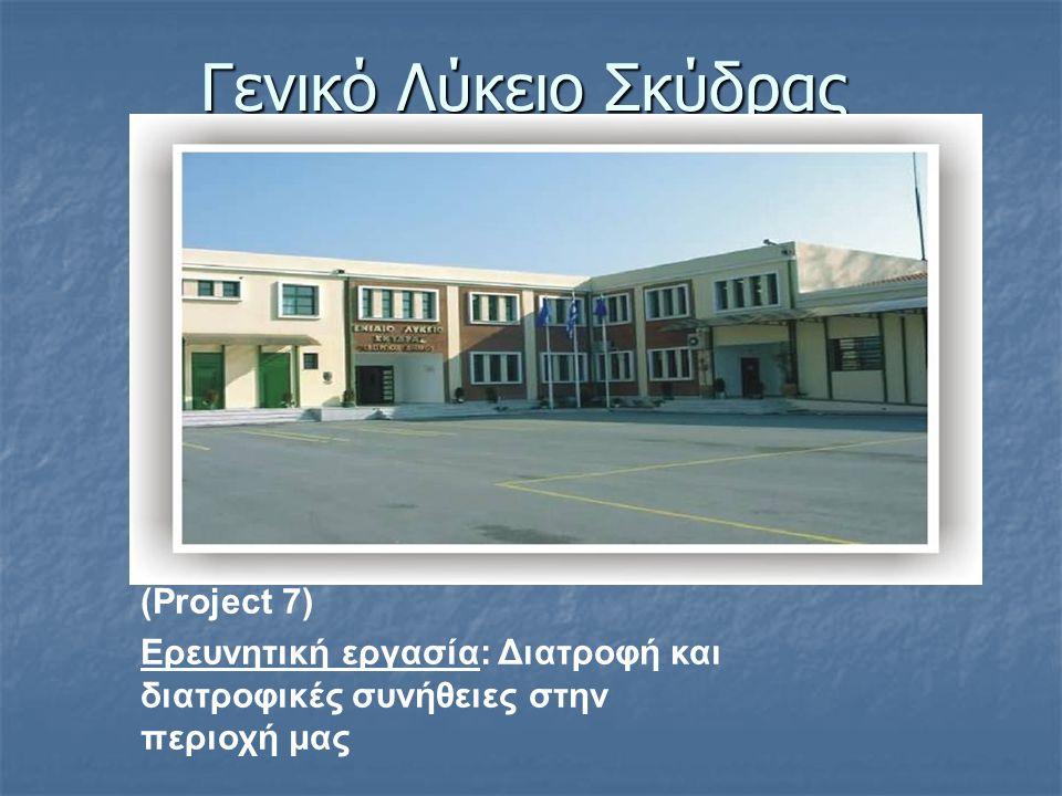 Γενικό Λύκειο Σκύδρας (Project 7)
