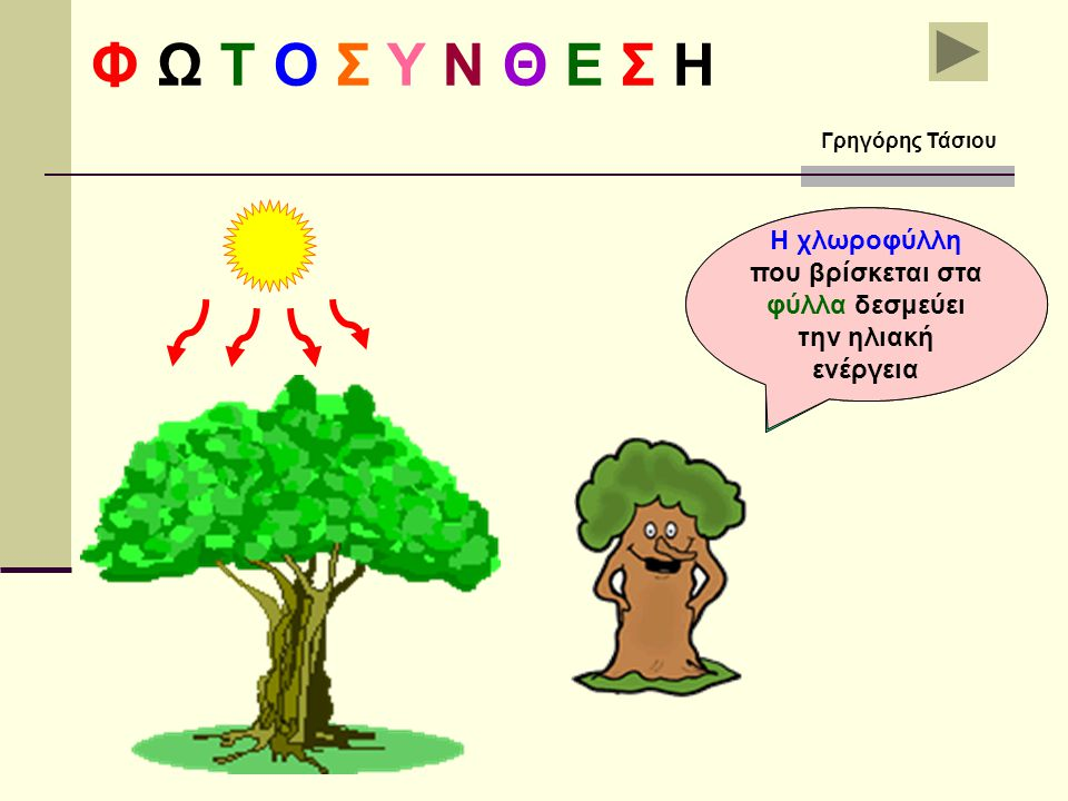 Φ Ω Τ Ο Σ Υ Ν Θ Ε Σ Η Γρηγόρης Τάσιου. Η χλωροφύλλη που βρίσκεται στα φύλλα δεσμεύει την ηλιακή ενέργεια.