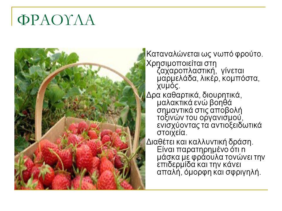 ΦΡΑΟΥΛΑ Καταναλώνεται ως νωπό φρούτο.