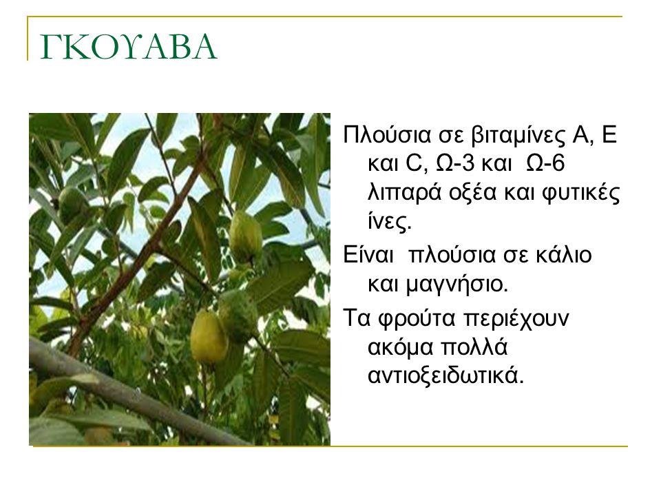 ΓΚΟΥΑΒΑ Πλούσια σε βιταμίνες Α, Ε και C, Ω-3 και Ω-6 λιπαρά οξέα και φυτικές ίνες. Είναι πλούσια σε κάλιο και μαγνήσιο.