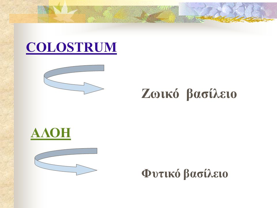 COLOSTRUM Ζωικό βασίλειο ΑΛΟΗ Φυτικό βασίλειο