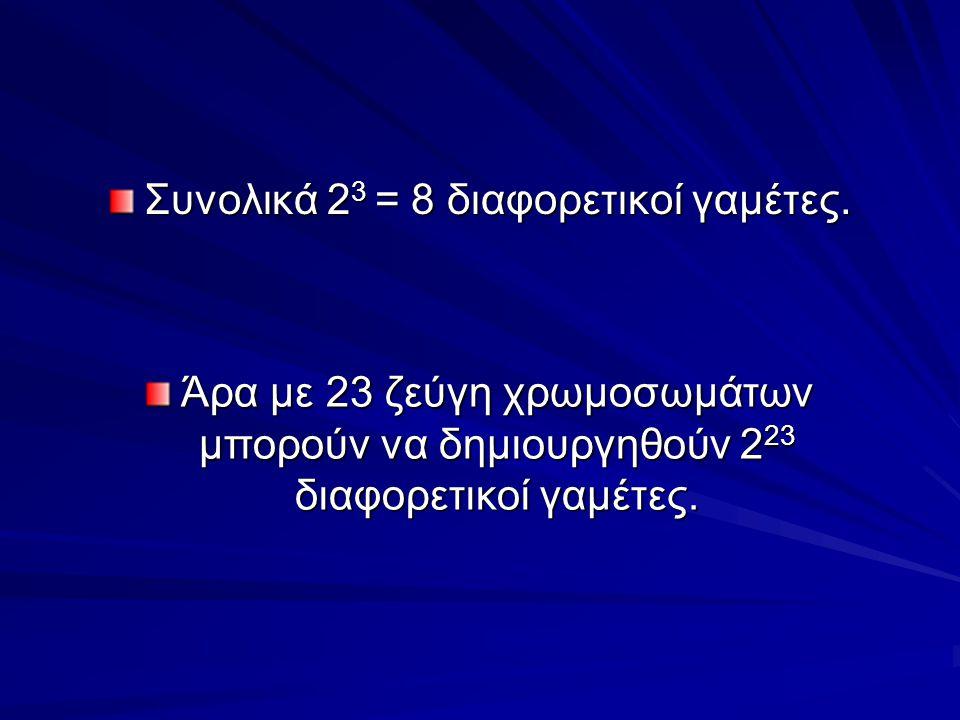 Συνολικά 23 = 8 διαφορετικοί γαμέτες.