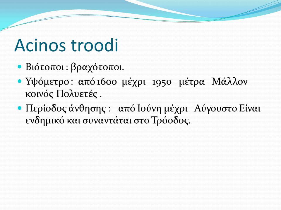 Acinos troodi Βιότοποι : βραχότοποι.
