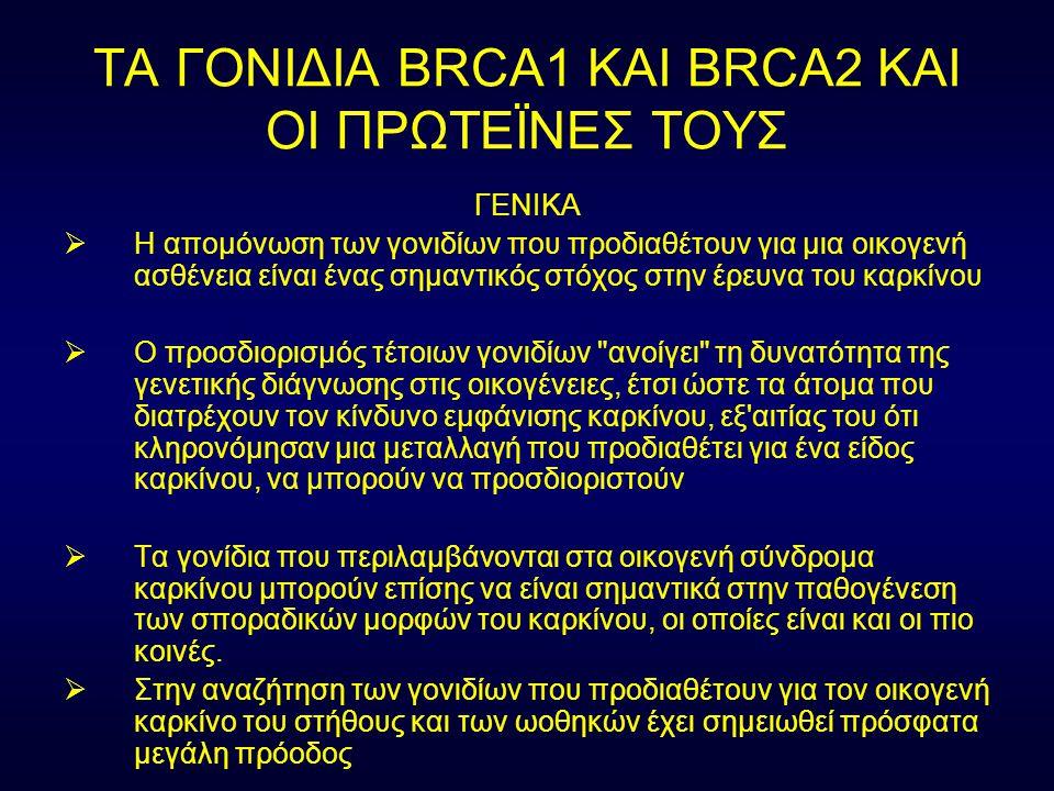 ΤΑ ΓΟΝΙΔΙΑ BRCA1 ΚΑΙ BRCA2 ΚΑΙ ΟΙ ΠΡΩΤΕΪΝΕΣ ΤΟΥΣ