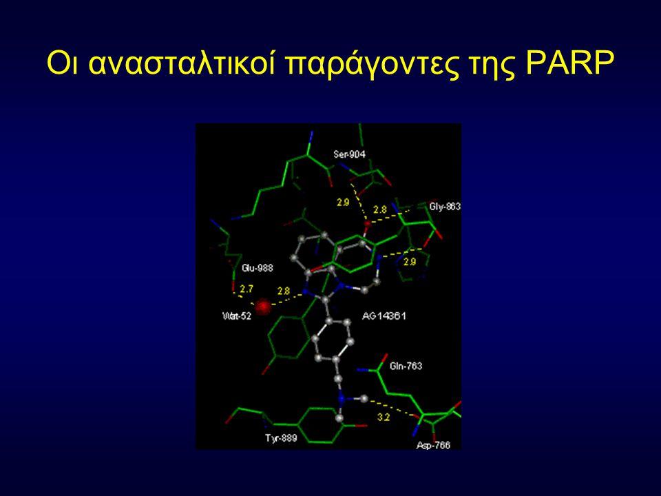 Οι ανασταλτικοί παράγοντες της PARP