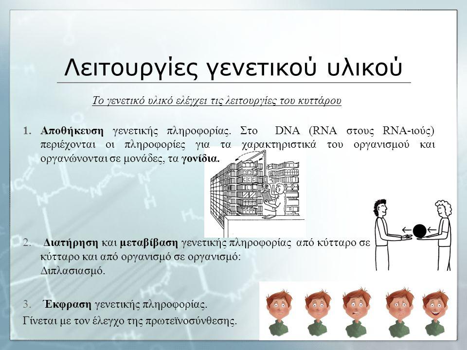 Λειτουργίες γενετικού υλικού