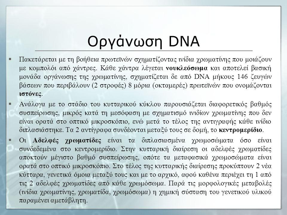 Οργάνωση DNA