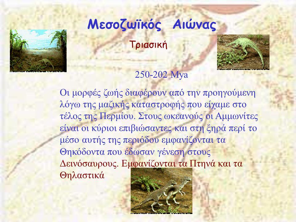 Μεσοζωϊκός Αιώνας Τριασική 250-202 Μya