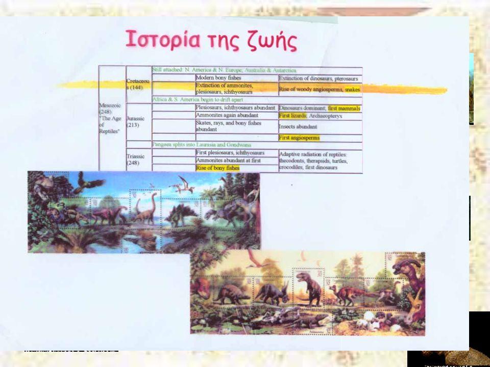 Μεσοζωϊκός Αιώνας Κρητιδική 141-65 Μya