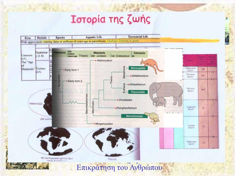 Καινοζωϊκός Αιώνας Πλειόκαινος 5-2 Μya