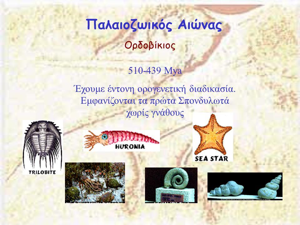 Παλαιοζωικός Αιώνας Ορδοβίκιος 510-439 Μya