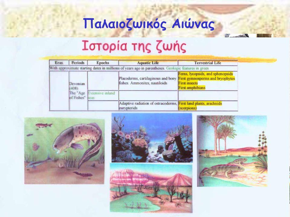 Παλαιοζωικός Αιώνας Δεβόνιος 409-363 Μya