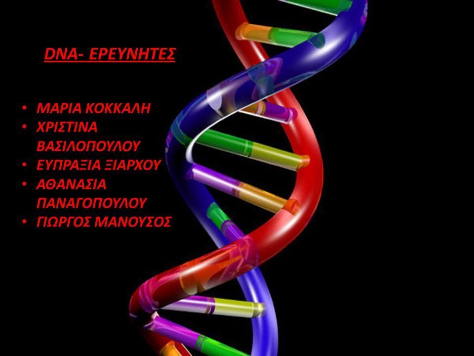 DNA- ΕΡΕΥΝΗΤΕΣ ΜΑΡΙΑ ΚΟΚΚΑΛΗ ΧΡΙΣΤΙΝΑ ΒΑΣΙΛΟΠΟΥΛΟΥ ΕΥΠΡΑΞΙΑ ΞΙΑΡΧΟΥ